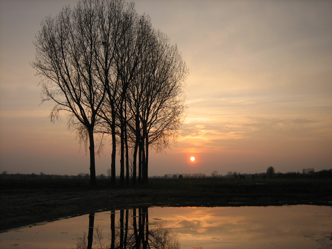 waterland7